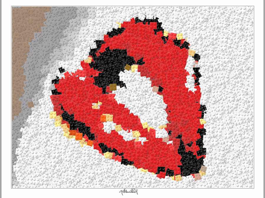 Lego, Legokunst, Legoart, Wandbil, Kunstdruck