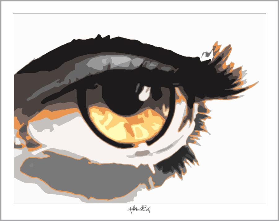 Augenbild, Kunst, moderne-Pop Art, Augenkunst, Augenpraxis,