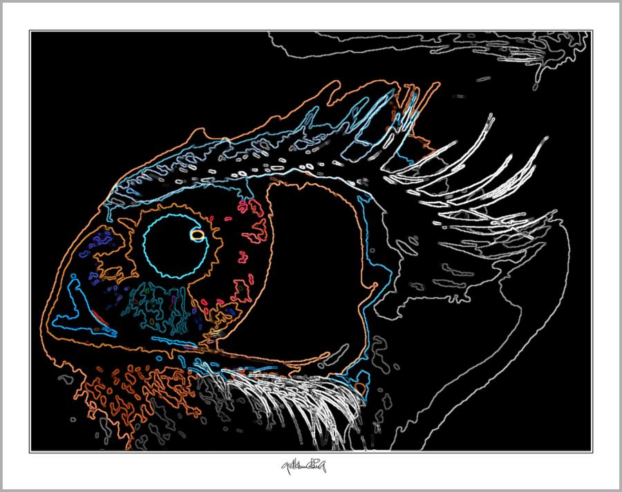 Augen, Wandbild, Kunst