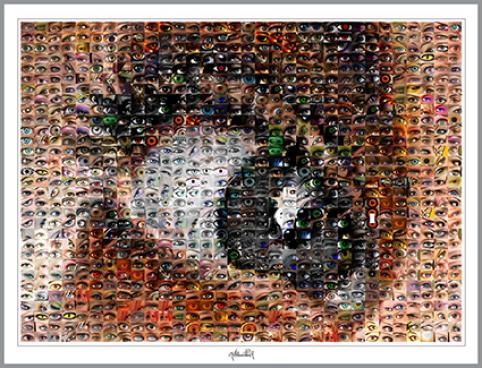 Wandbilder für die Augenarztpraxis